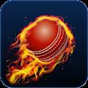 Cricket 65