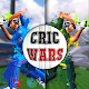 Cric Wars (game)