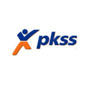 Sales Report PKSS