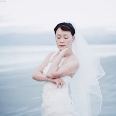 Wedding photographer Aneta coufalova Swenson (coufalova). Photo of 23.01.2016