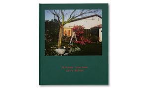 woonhuis met man achter verlicht raam en een trap bij een bloeiende struik in de tuin