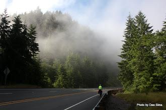 Photo: (Year 2) Day 357 - Swirling Mist