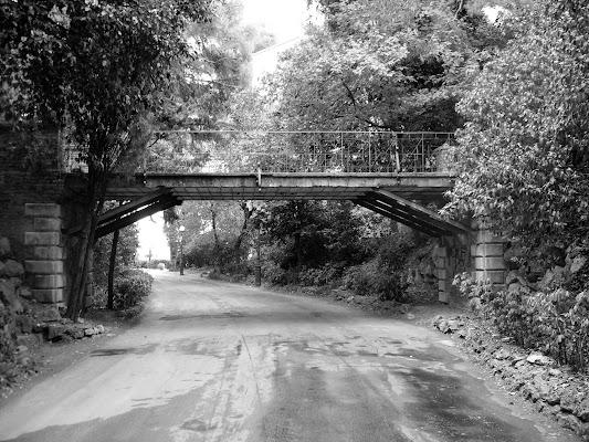 Strada di campagna di graziella57