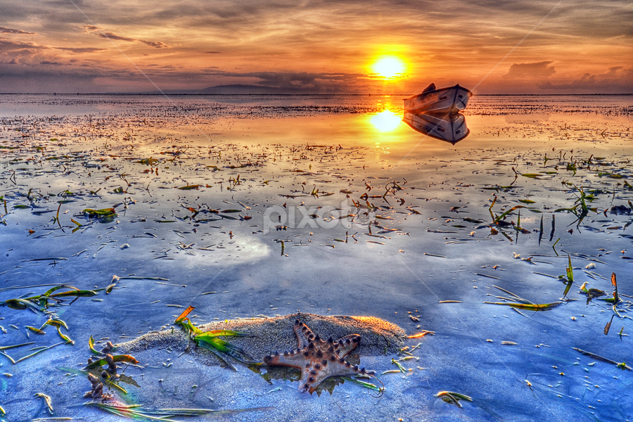 Starfish and Boat by Hendri Suhandi - Landscapes Sunsets & Sunrises ( bali, seaweed, starfish, sunrise, landscape, boat )