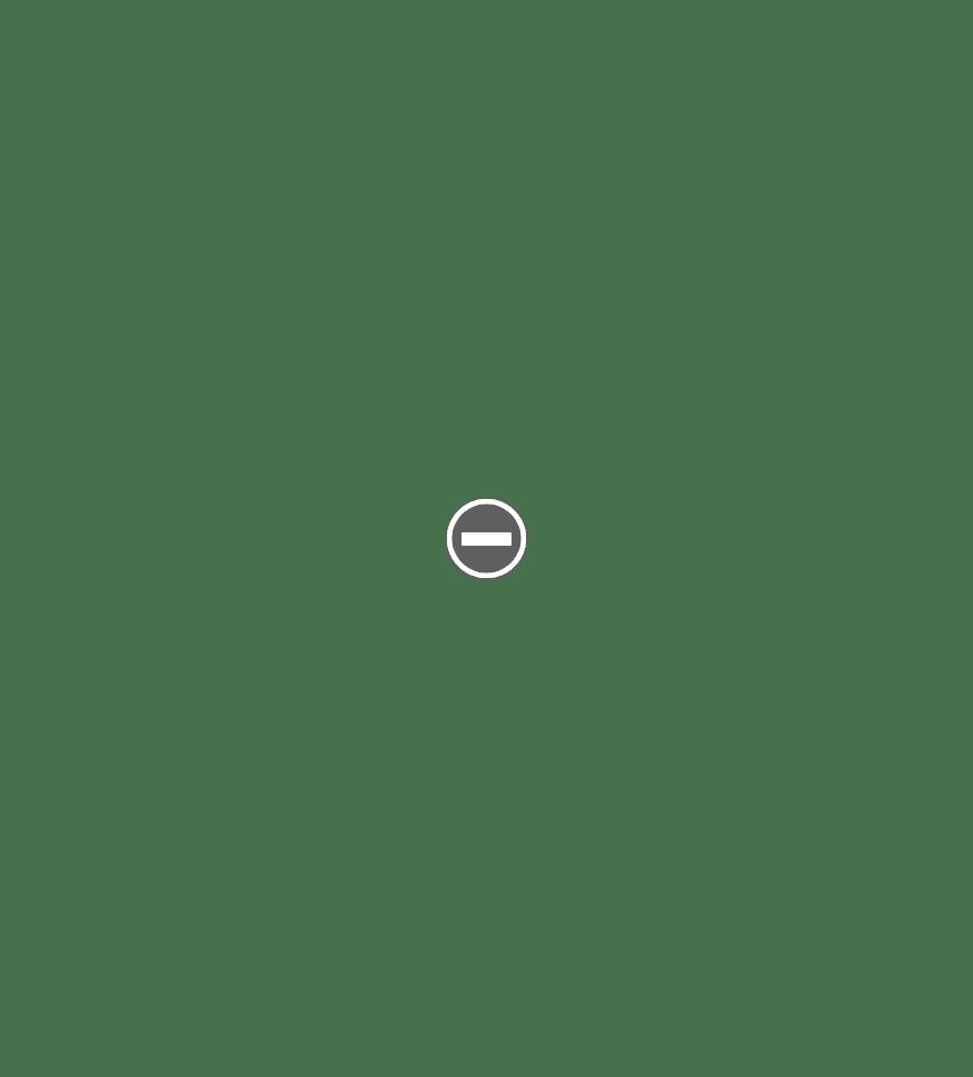 Wordpress Screenshot 9 - Contact Page