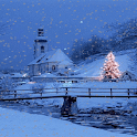 Christmas Tree In Snow LWP icon