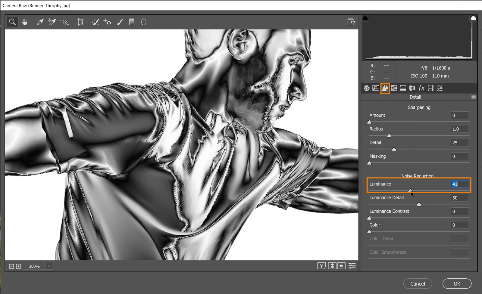 On the Detail tab, increase the Luminance to increase the noise reduction and remove the remaining details of the body hair, facial hair, and the mesh pattern of the shirt