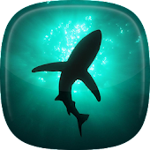 Shark Live Wallpaper