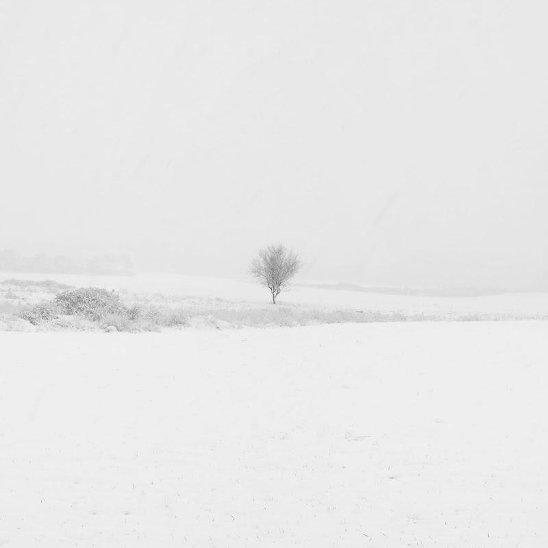 Il gelo della solitudine di steconte