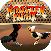 Rooster Fight - Chicken Fight