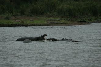 Photo: Kruger National Park. Kanniedood Dam