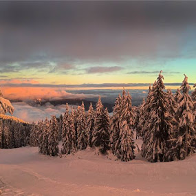 Diana Anaid took this shot on  Mount Seymour today. by Aaron Bushkowsky - Instagram & Mobile iPhone