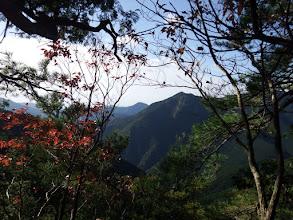 間弓の行者山
