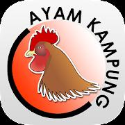 MARDI Penternakan Ayam Kampung
