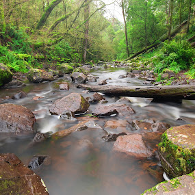 Coliban River by I Snapit - Landscapes Waterscapes (  )