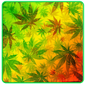 Weed Reggae HD GO Launcher icon