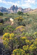 Photo: Organ Mountains, New Mexico