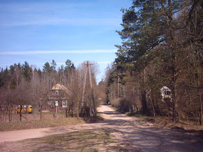 Photo: Czerlonka Leśna