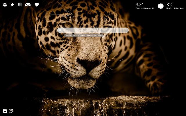 Jaguar Wallpapers HD & Jaguar Theme