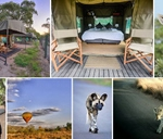 Yoga and Safari Retreat - Pilanesberg : Tented Adventures