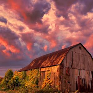 Morning barn 1400.jpg