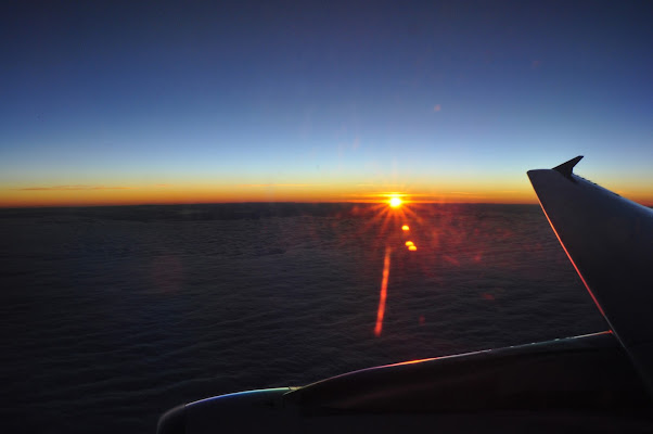 Flying at sunrise di Cristina Accotto