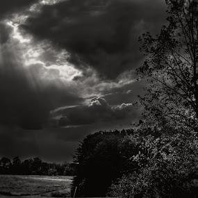 Sun Streaks by Frank Matlock II - Landscapes Prairies, Meadows & Fields ( adams, clouds, b&w, sunset, black & white,  )
