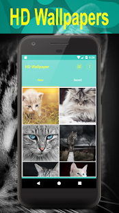 "Cats Wallpapers ""meow"" - náhled"