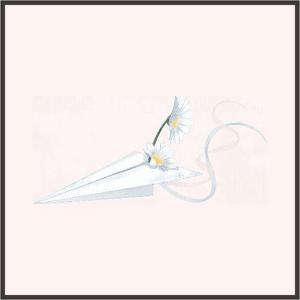 秘密の紙飛行機