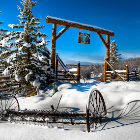 High Aspen Ranch by Chad Weisser - Landscapes Prairies, Meadows & Fields ( high aspen ranch, hdr, tree, weisser photography, snow, plow, aspen, garyfonglandscapes, holiday photo contest, photocontest,  )