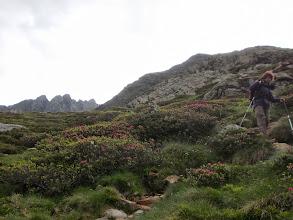 Photo: sentier trés caillouteux sous le Refuge du Pinet