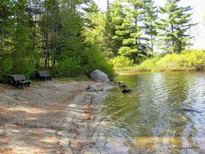 Photo: Swimming area at Ricker Pond State Park