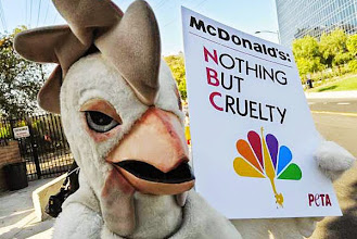 """Photo: A member of the group """"People for the Ethical Treatment of Animals"""" (PETA) wears a chicken costume as she protests outside the NBC television studios in Los Angeles on October 6, 2009.  The group, dressed as chickens, waved placards at passing motorists outside the studio during the taping of ``The Jay Leno Show'' to protest McDonald's ads that will be screened on the program. PETA is campaigning for McDonalds to adopt more humane bird slaughter methods.             AFP PHOTO/Mark RALSTON (Photo credit should read MARK RALSTON/AFP/Getty Images)"""