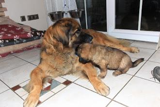 Photo: Tante Luna und Barney