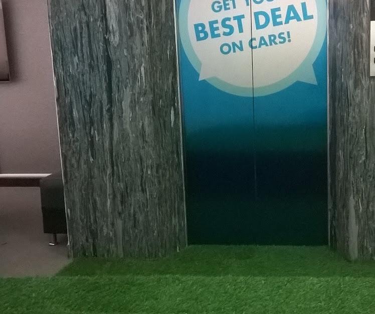 Dưới góc nhìn của chuyên gia về Thảm cỏ nhựa giá mềm