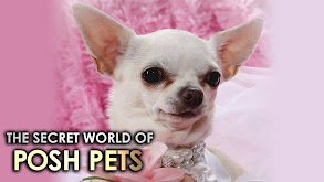 The Secret World of Posh Pets thumbnail