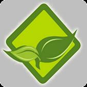 Budidaya Sayuran Hortikultura