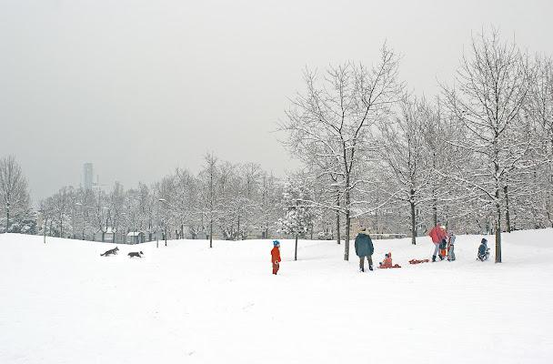 Che bella la neve in città! di carlo-bi