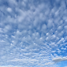Morning Clouds by Kerry Demandante - Landscapes Cloud Formations ( clouds, mountains, pikes peak, sky, colorado, landscape,  )