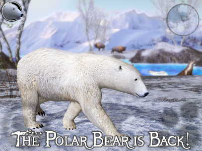 Polar Bear Simulator 2 1.0 (Full Paid) Apk Download 6