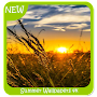 Summer Wallpapers 4k APK icon