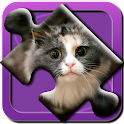 Kitties Puzzle HD