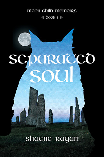 Separated Soul cover