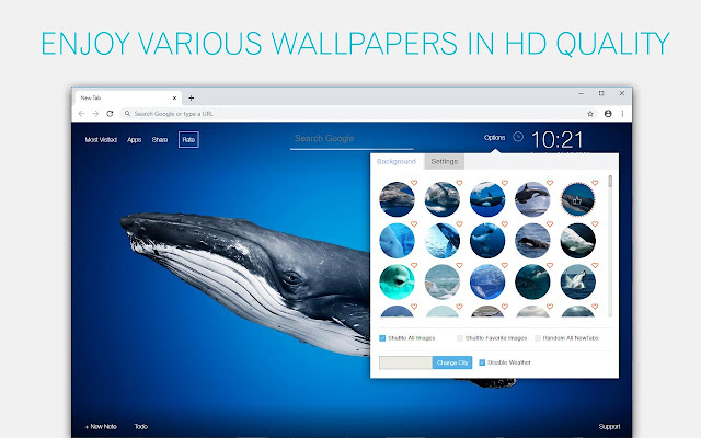 Whale Wallpaper HD Whales New Tab
