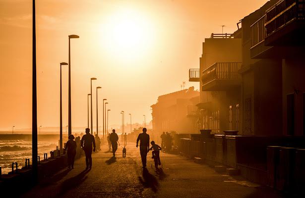 Vite al calar del Sole di Salvatore Gulino