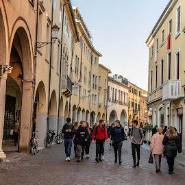 A Padova Autumn Street by Hariharan Venkatakrishnan - City,  Street & Park  Street Scenes
