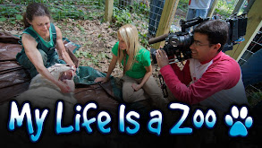 My Life Is a Zoo thumbnail