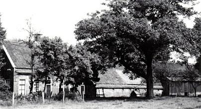 Photo: Kerkstraat 26, (Roelof Hoving) met de walnotenboom
