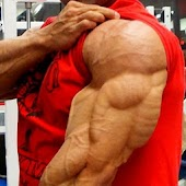 All Triceps exercises
