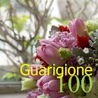 100 Guarigione icon